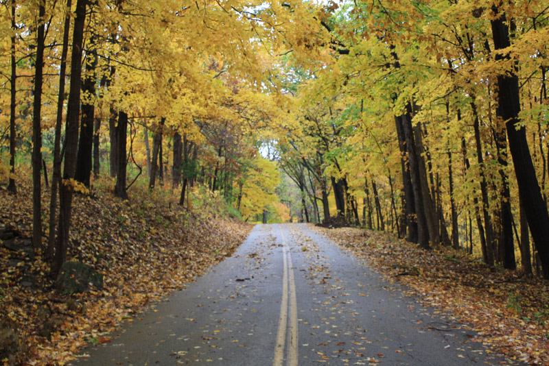 Drive through Pere Marquette State Park